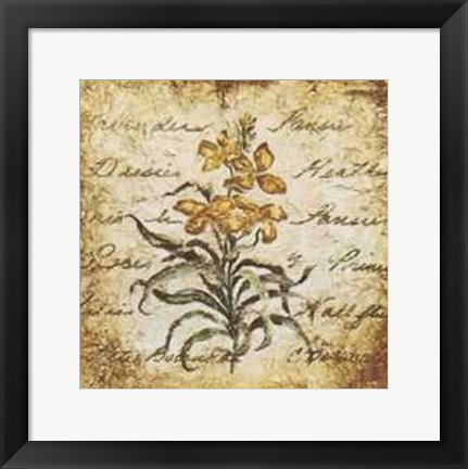 Framed Yellow Petit Botanical Print