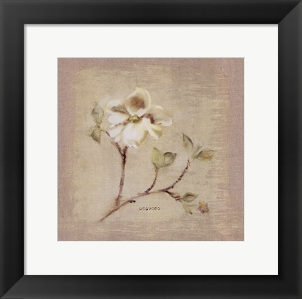 Framed Dogwood Square Print