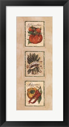 Framed Vintage Vegetable Assorted Print