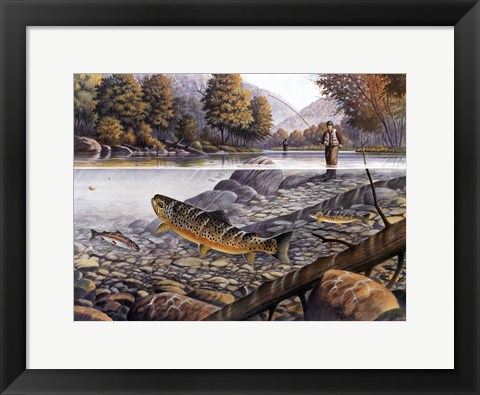 Framed Jumping Trout Print