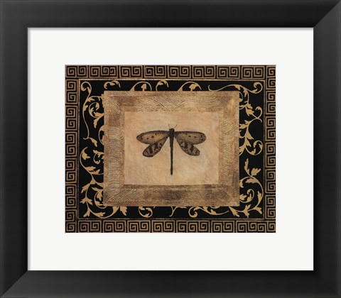 Framed Dragon Fly I Print
