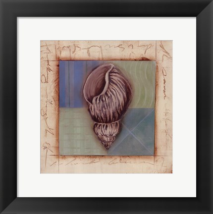 Framed Shell Accents III Print