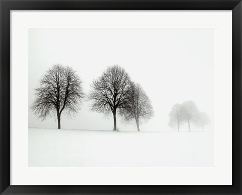 Framed Winter Trees II Print