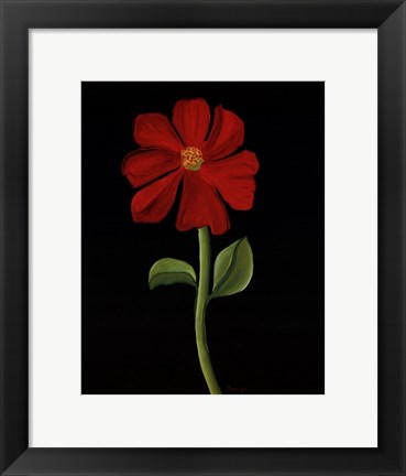Framed Red Cosmos Print