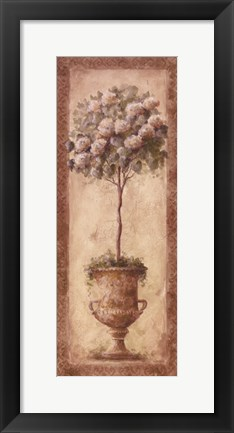 Framed Floral Topiary I Print