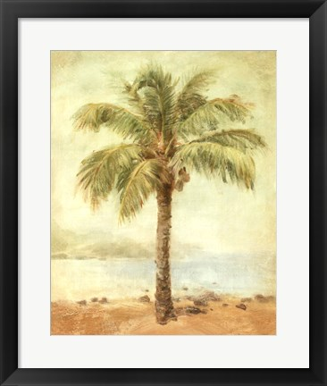 Framed Mirage Palm II Print