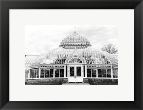 Framed Conservatory III Print