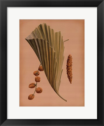 Framed Palm Frond III Print