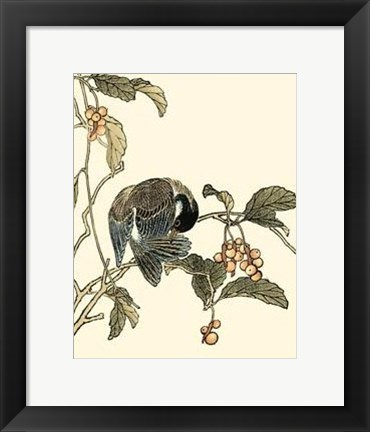 Framed Oriental Bird On Branch IV Print