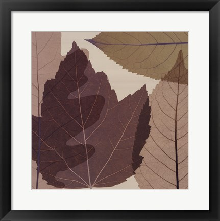 Framed 4 Leaves 2 Print