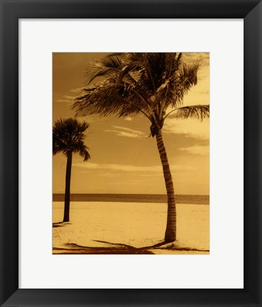 Framed Palm Beach I Print