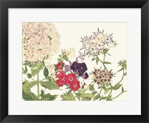 Framed Japanese Flower Garden II Print