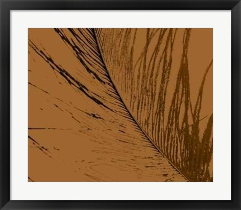 Framed Feathered Impression II Print