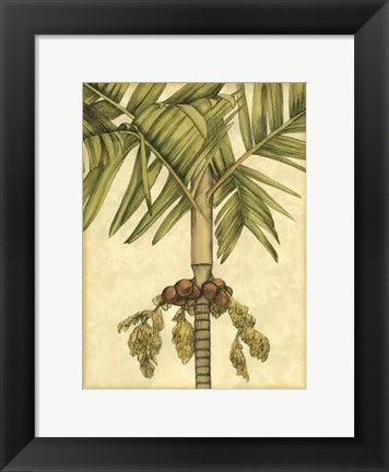 Framed Small Graphic Palms II Print