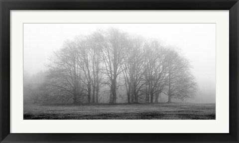 Framed Gathering Trees Print