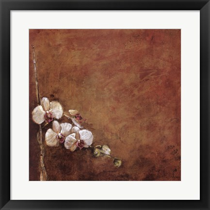 Framed Orchid Series I (Simplicity I) Print