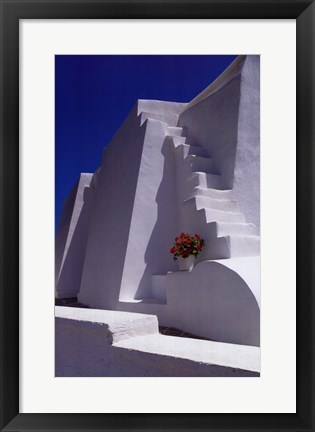 Framed White Steps with Geraniums Print