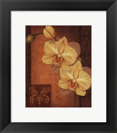 Framed Golden Orchid II Print