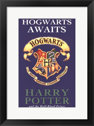 Framed Harry Potter Book Covers Print