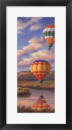 Framed Balloon Panel II Print