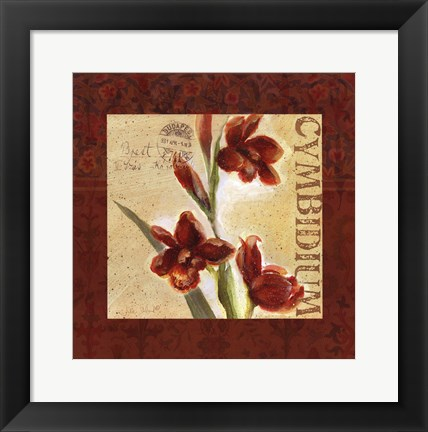 Framed Red Orchid Square II Print