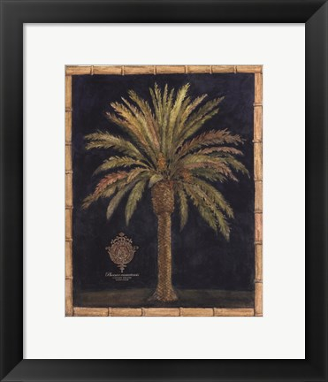Framed Caribbean Palm I With Bamboo Border Print