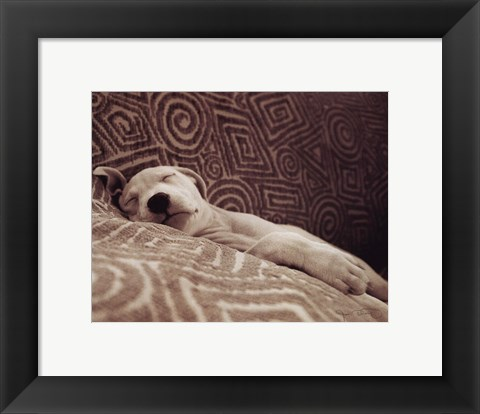 Framed Dog Tired Print