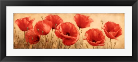 Framed Poppies Grace I Print