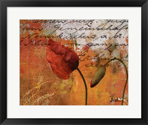 Framed Poppies Composition II Print