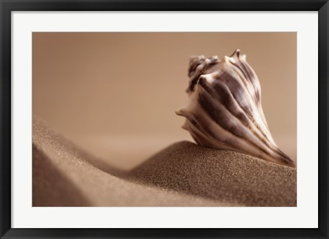 Framed Mythic Beach II Print