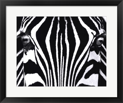 Framed Black and White I Print