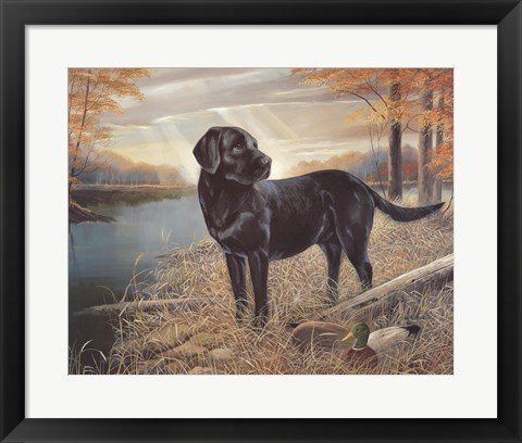 Framed Black Lab with Decoys Print