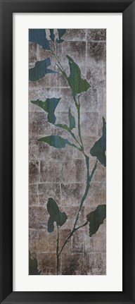 Framed Transparent Leaves II Print