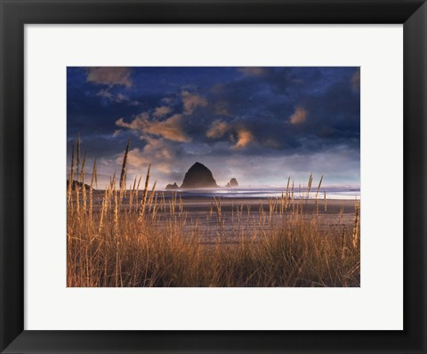 Framed View of Beauty Print