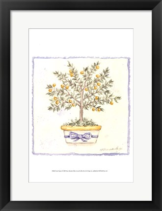 Framed French Topiary I Print