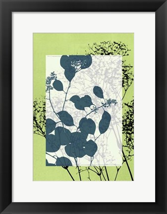 Framed Sm Translucent Wildflowers VII Print