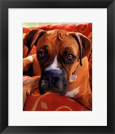 Framed Harry Boxer Print