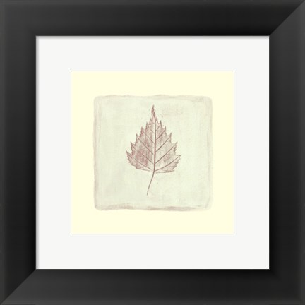 Framed Leaf Impression lll Print