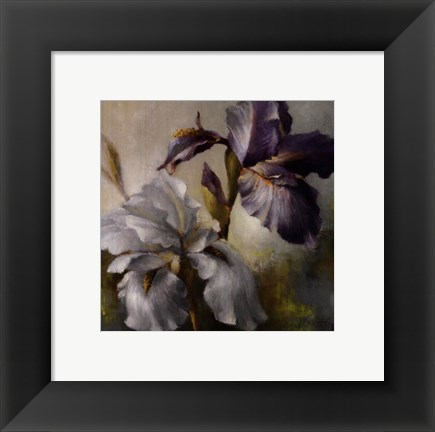 Framed Irises After the Rain Print