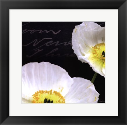 Framed Poppies Over Black I Print