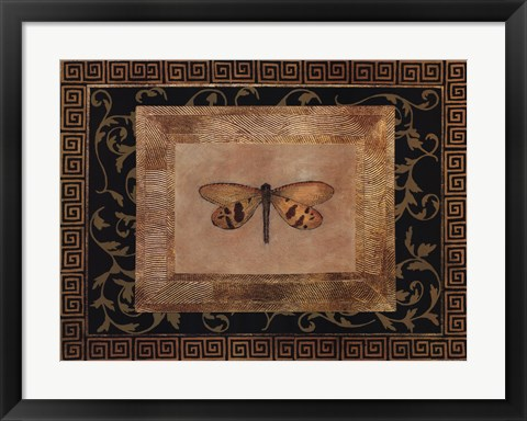 Framed Dragon Fly II Print