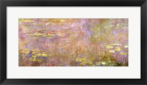 Framed Waterlilies, after 1916 Print