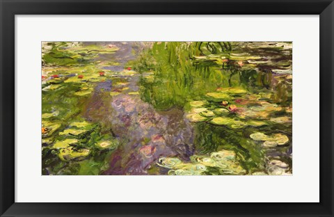 Framed Waterlilies (green horizontal) Print