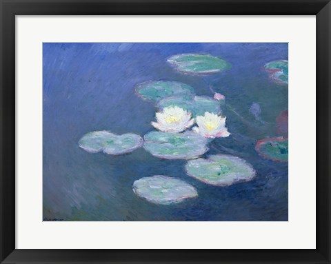 Framed Waterlilies, Evening Print