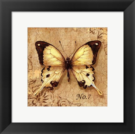 Framed Clair's Butterfly II Print