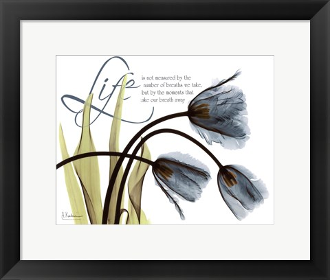 Framed Mineral Blue Tulips...Life Print