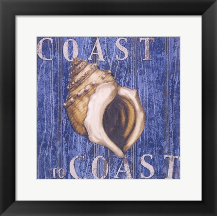 Framed Coastal USA Conch Print