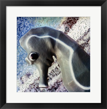 Framed Profile of playground seahorse Print
