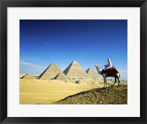 Framed Man riding a camel near the pyramids, Giza, Egypt Print