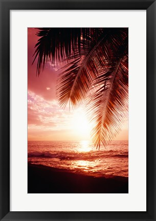 Framed Hawaii USA Print